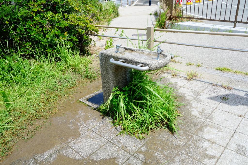 徳光海水浴場水洗い
