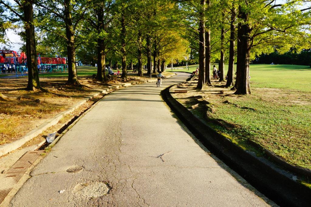若宮公園 沿道
