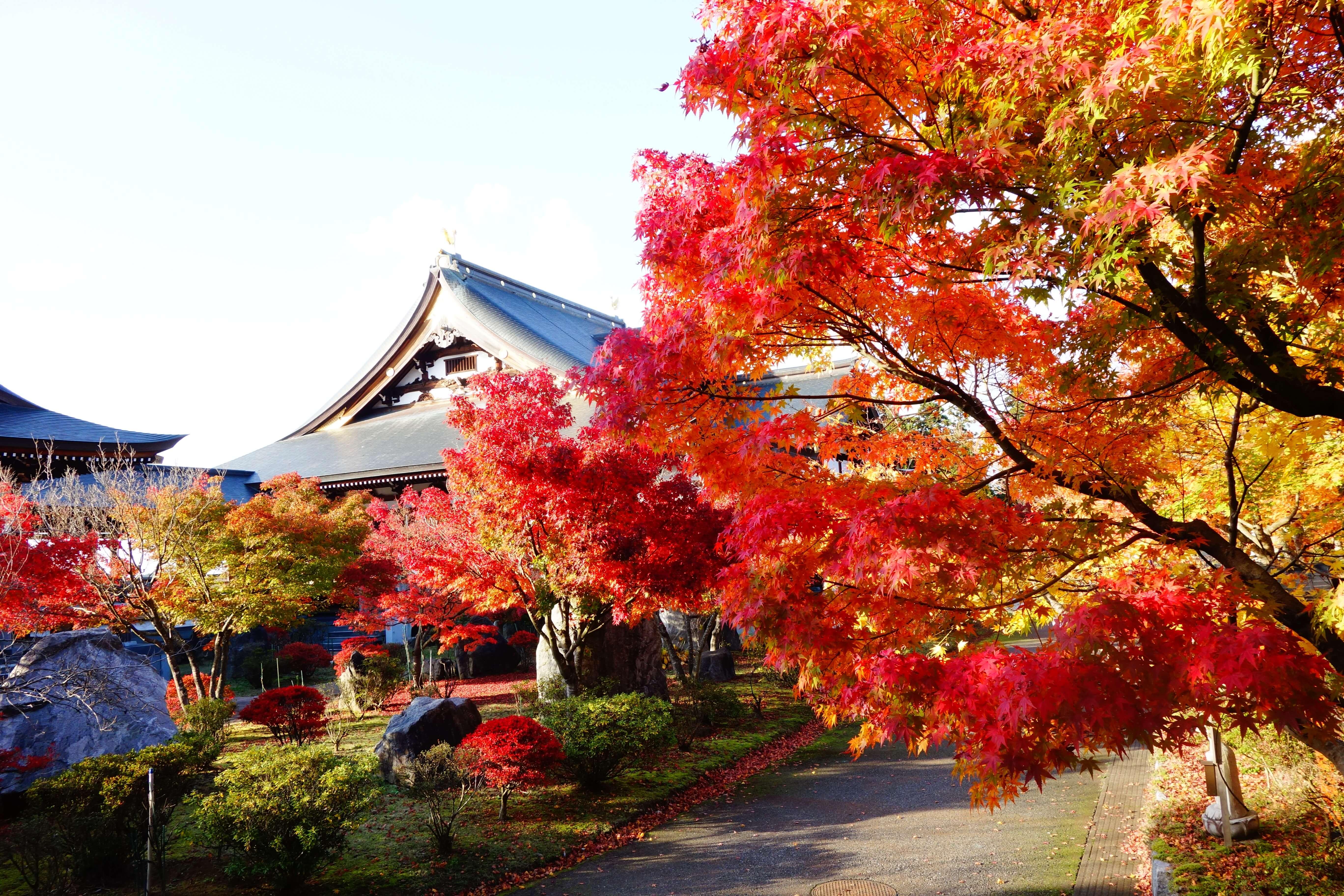 俱利伽羅不動寺|石川県の紅葉スポット!かほく市にある北陸屈指の紅葉の名所