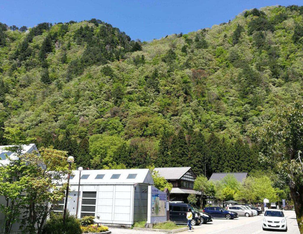 山法師の駐車場