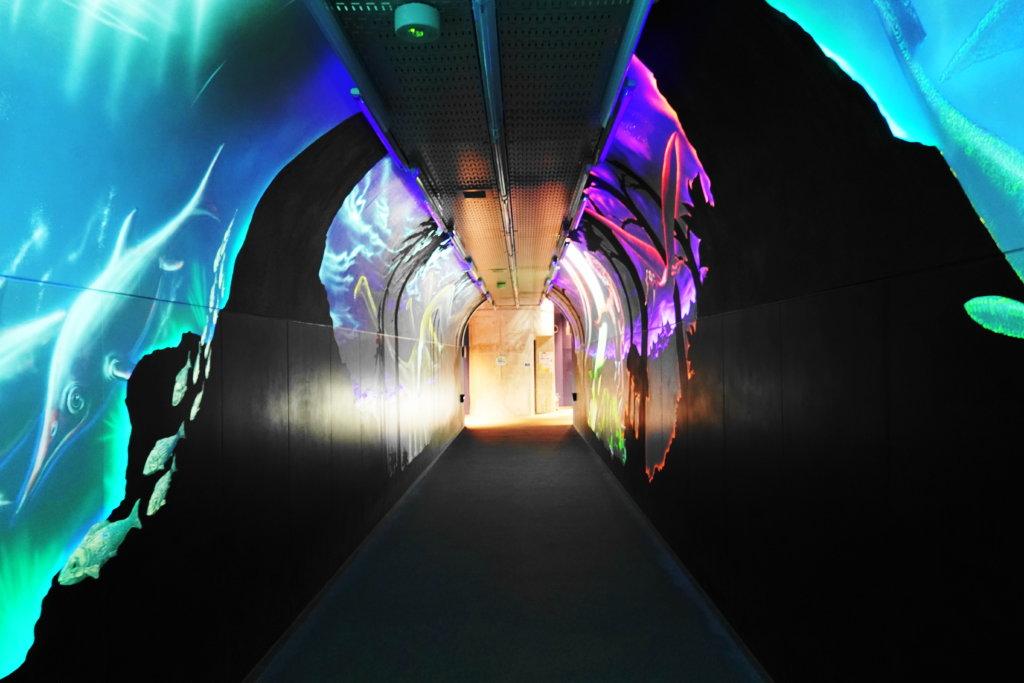 白山恐竜パーク白峰の音と光のトンネル