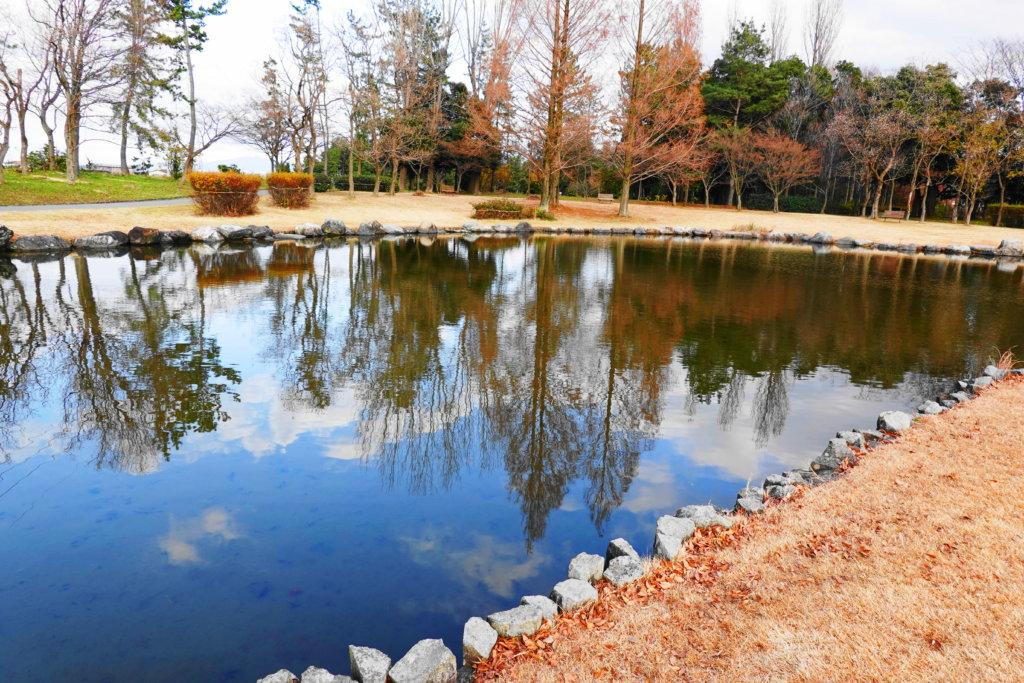 北部公園の池